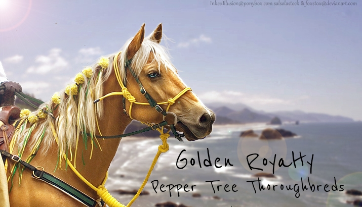 PT Golden Royalty