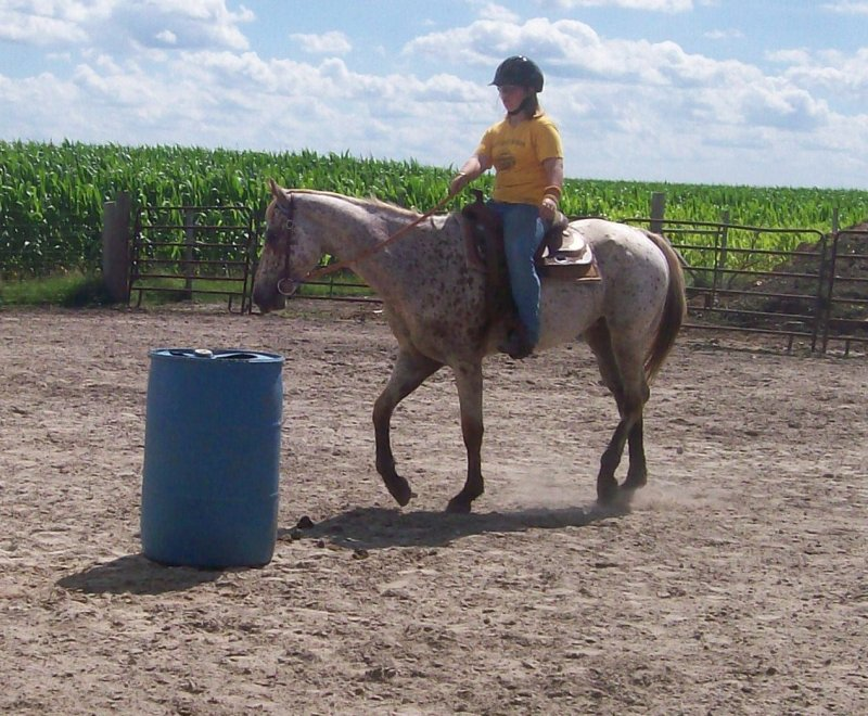 loping lesson