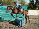 Retraining a Racehorse - Moonfire (Week 1)