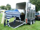 Transporting Horses � What do You Need to Keep Your Horse Safe?