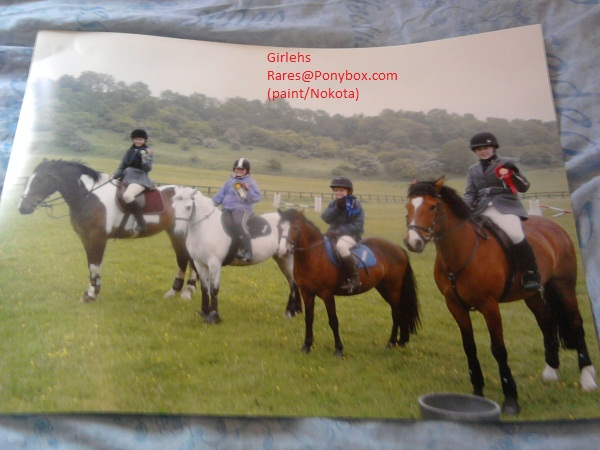 my first win in show jumping