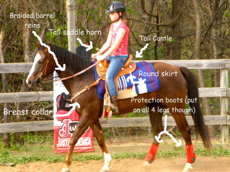 Barrel+racing+equipment