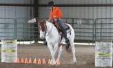 Horse Training - The Trail Class