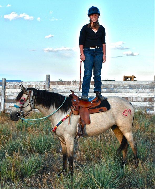 how to teach my horse tricks