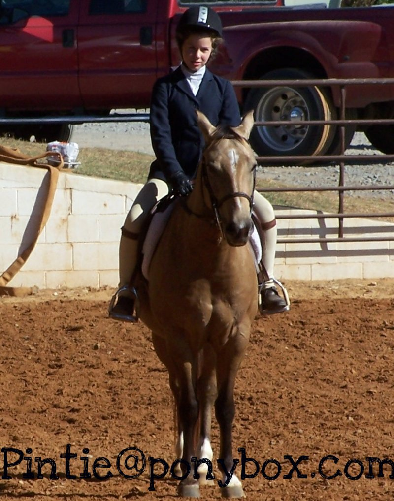 Hunter Creek Horse Show