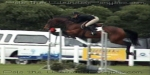 9 - 10 October Showjumping Competition