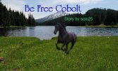 Be Free Cobolt - Part 1