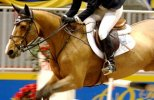Beezie Madden - United States Olympic Show Jumper