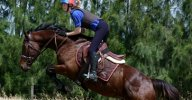 Retraining a Racehorse � Moonfire � Back by popular demand