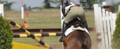 Reasons My Horse Refuses To Jump - Part 1