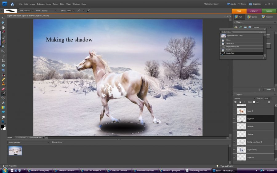 How To add shadows to a horse graphic
