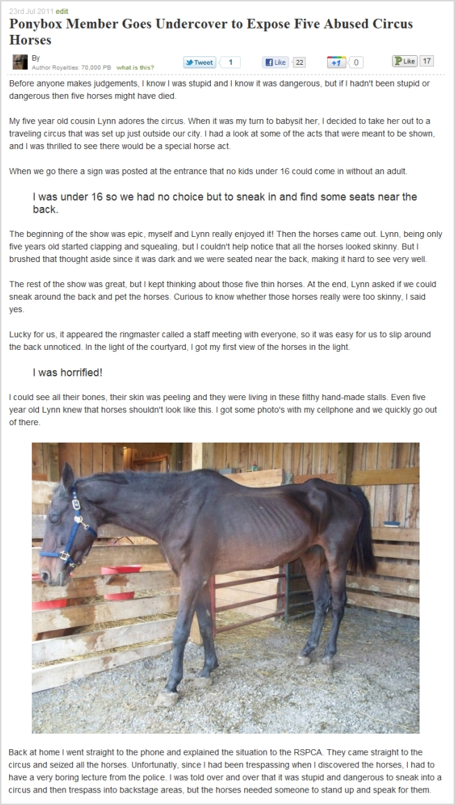 Abused Circus Horse Story