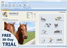 EquineMaxES Software Keeps Your Barn Organized