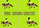 Basic Lunging Exercises