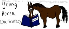 Young Horse Dictionary