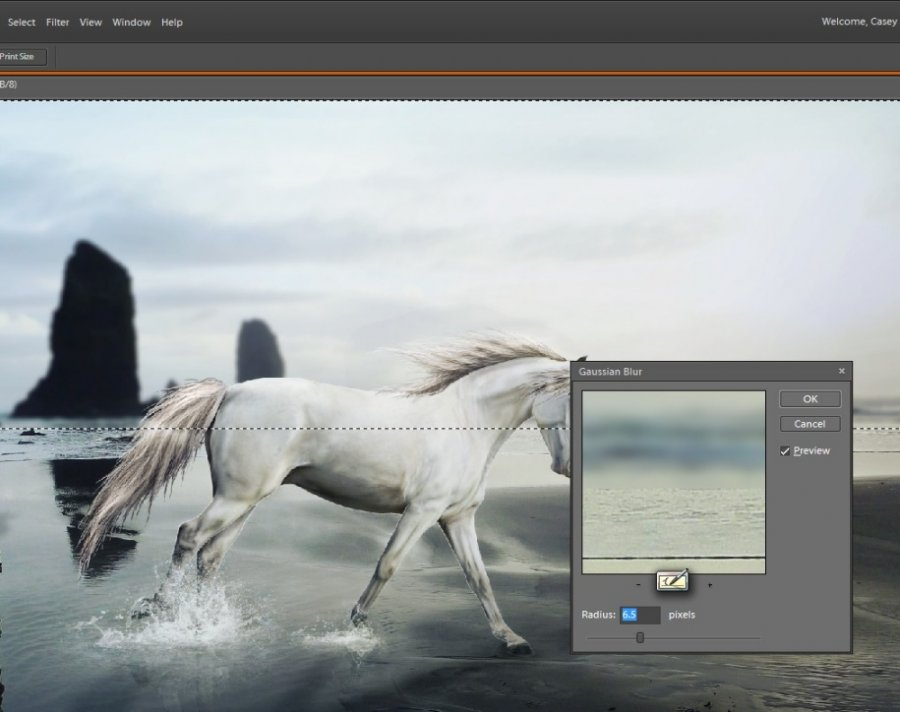 How To Effectively Blur Horse Manipulations