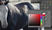 Photoshop - How to Give a Black Horse White Facial Markings