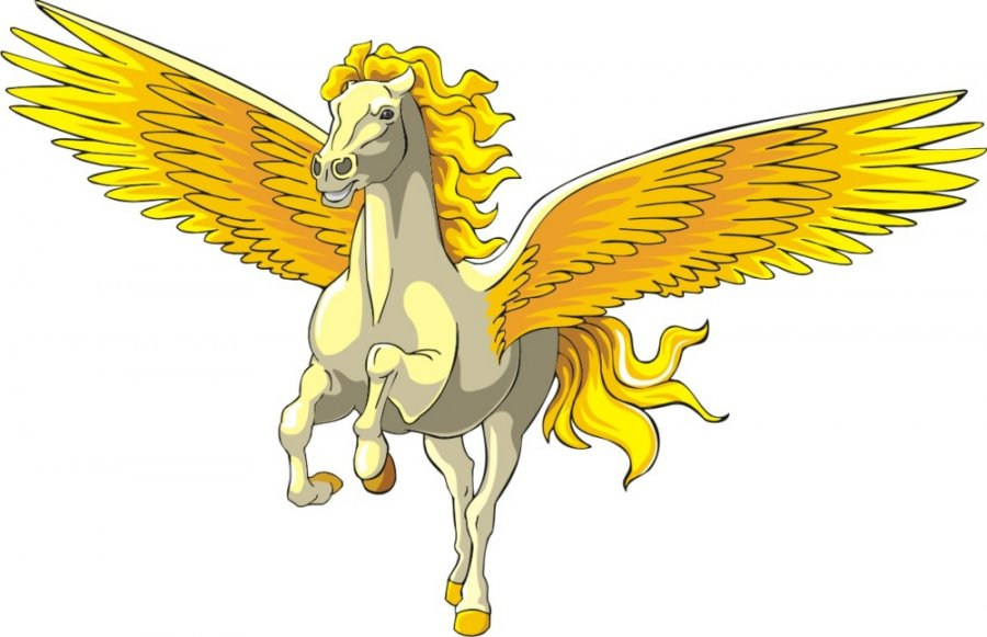 Pegasus Graphic