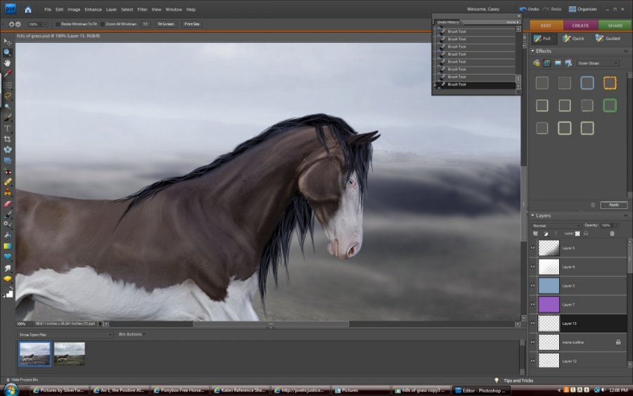 Horse Graphics - How to Draw Black a Mane and Tail using Photoshop