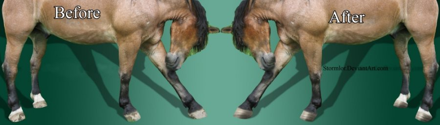 How to Draw Horse Hooves on Photoshop
