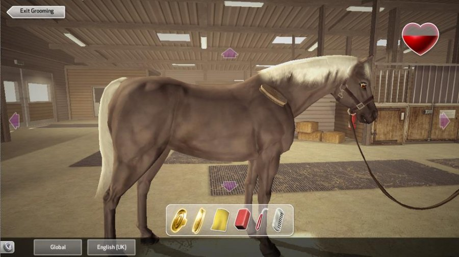 Virtual Multiplayer Horse Games