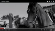2013 Equestrian Show Season [Video]