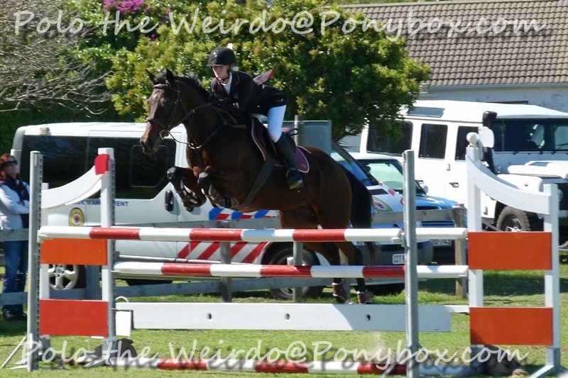 Showjumping Competition With Finola