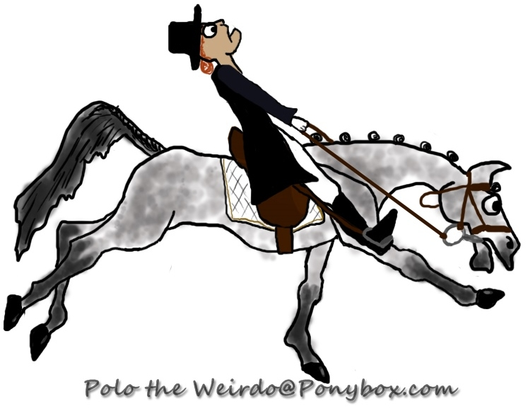 How to Ride a Dressage Test - The Eventer�s Version