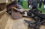 May Horse and Tack Auction Dissapoints