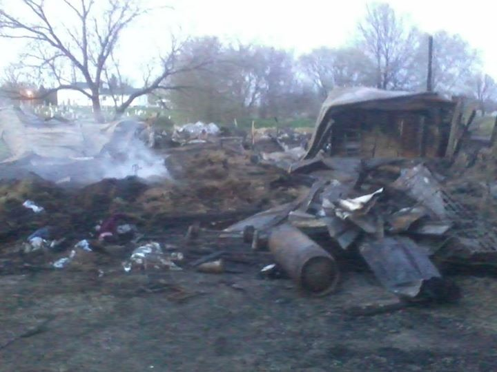My Horse and Eight Others Die in Tragic Barn Fire