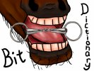 The Bit Dictionary - Mouthpieces - Part 3 of 3