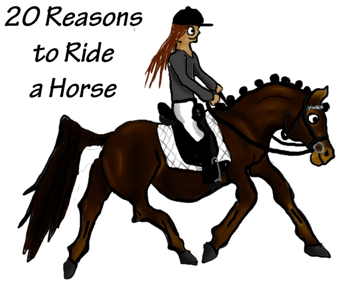Top Twenty Reasons To Ride A Horse