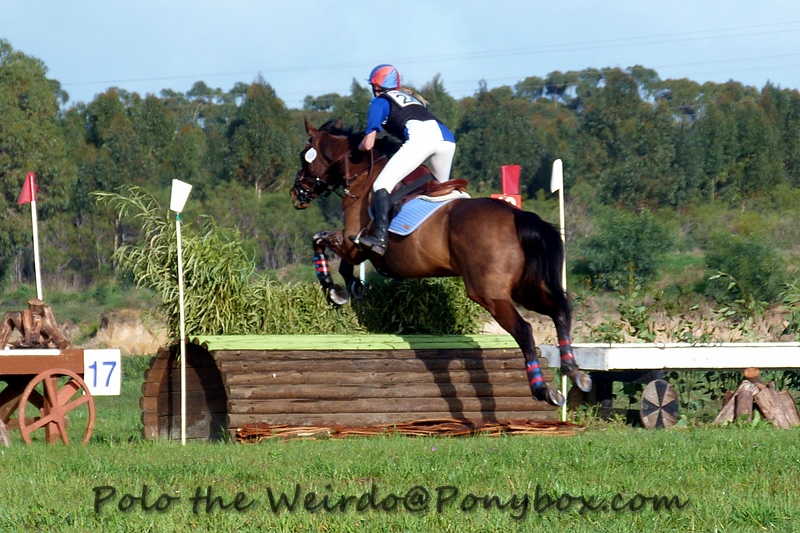 July Eventing Show