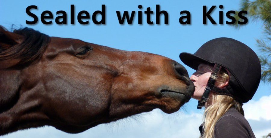Teach Your Horse to kiss
