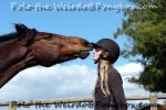 Trick Training - Teach Your Horse to Kiss