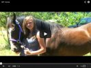 Saying Goodbye To The Horses We Love [Video]