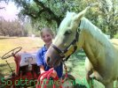 Palomino Horse Breed Photos
