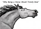 Top Ten Reasons Why Being a Horse Would Totally Rule