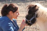 Why Horses Should Not Be Used As Service Animals