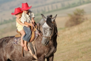 Quick Tips To Sell Your Horse Fast - What Not to Do