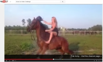 Dumb Things People Do on Horseback Video