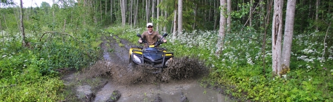 Horse Trails Destroyed by ATVs