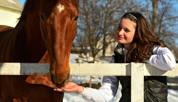 Money Saving Tips for Horse Owners