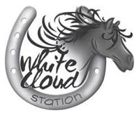 White Cloud Station