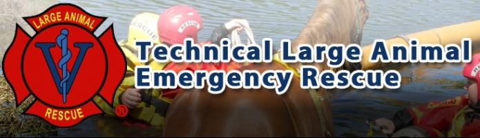 Large Animal Rescue Training