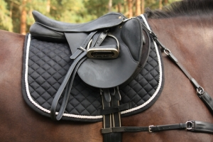 History of Horse Saddles