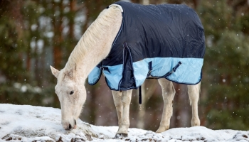 Five Blanketing Myths