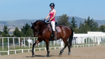 Unnoobification Epiphanies of a Dressage Noob – Bend