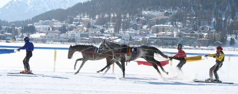 The White Turf Races