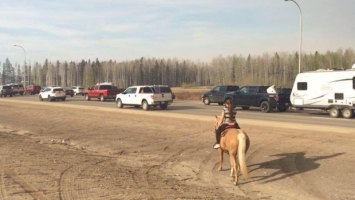Fort McMurray Horse Evacuation